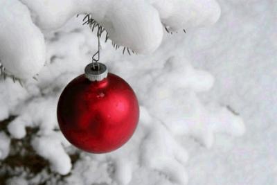 Una pallina sull'albero