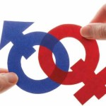 teoria-gender